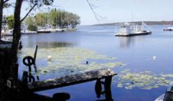 Sanguinet muse e du lac