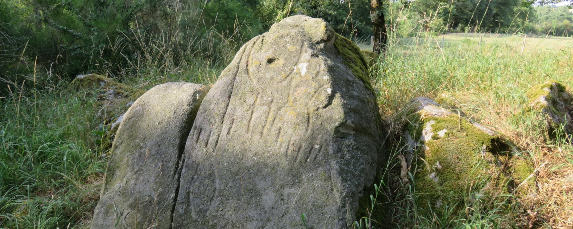 Site archéologique et blocs gravés des Vaulx [79]